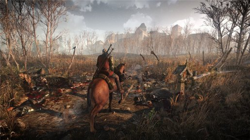 The Witcher 3: Wild Hunt ����� 36 ��������